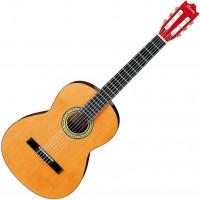 Guitarra acústica Nylon Ibanez GA3 AM